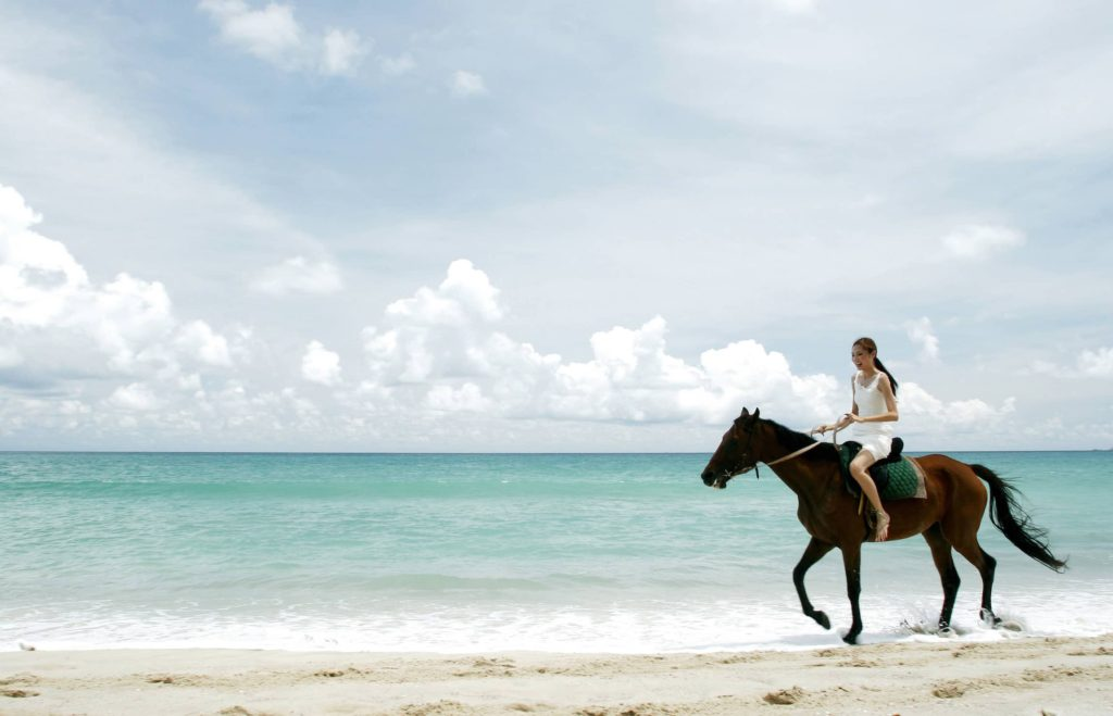 My friend riding her horse on the beach